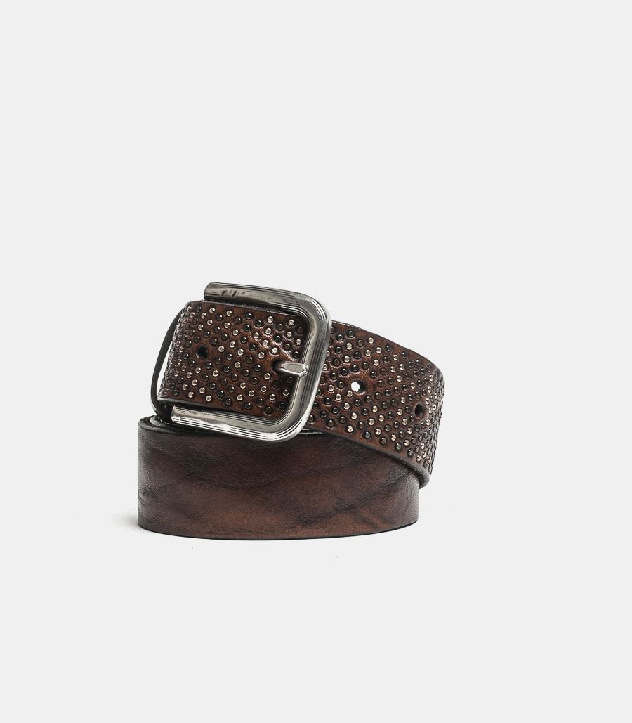 Men's studded belt brownie